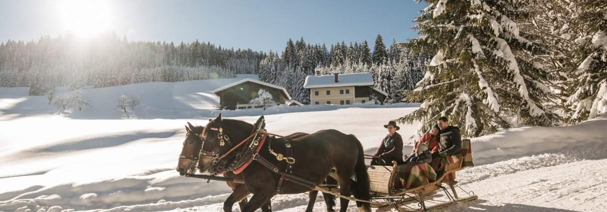 Winter_Pferdeschlitten