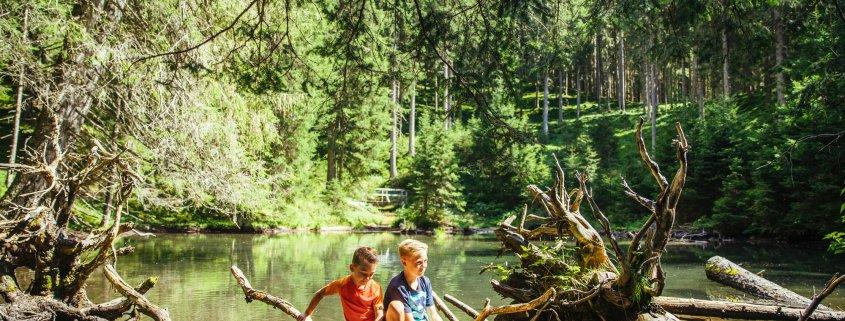 Kinder spielen im Wald am Wasser