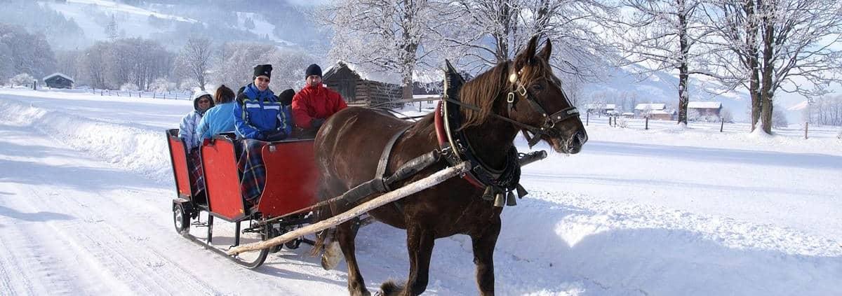 pferdeschlittenfahrt_niedernsill